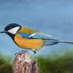 bird_yellow_blue_rework_800